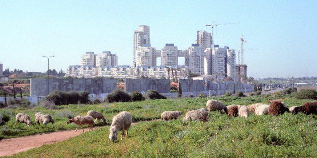 Les Arabes du Néguev ne sont pas des ennemis d'Israël