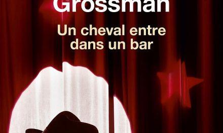 Dans les yeux de David Grossman