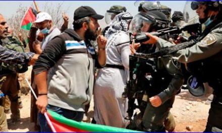 """Shaul Arieli : """"Peter Beinart ne se rend pas compte que le fossé israélo-palestinien est trop large pour être comblé"""""""